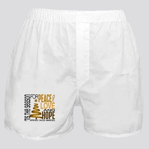 Christmas 1 Appendix Cancer Boxer Shorts