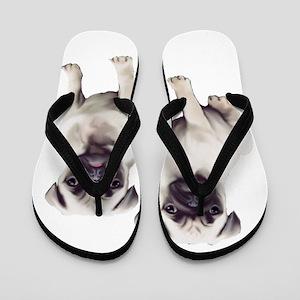 Pugs sitting Flip Flops