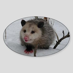 Snow Possum Sticker (Oval)