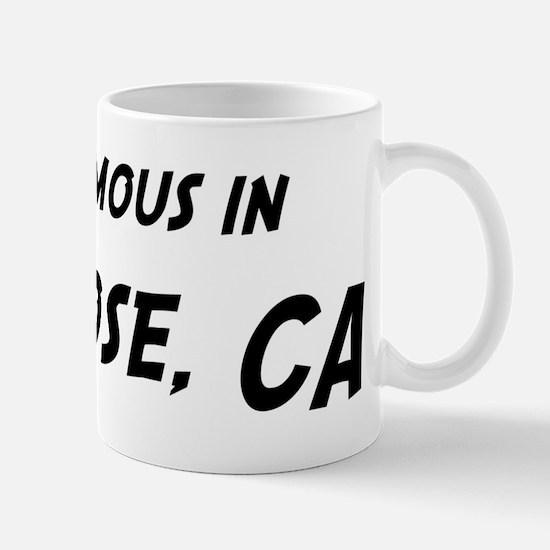 Famous in San Jose Mug