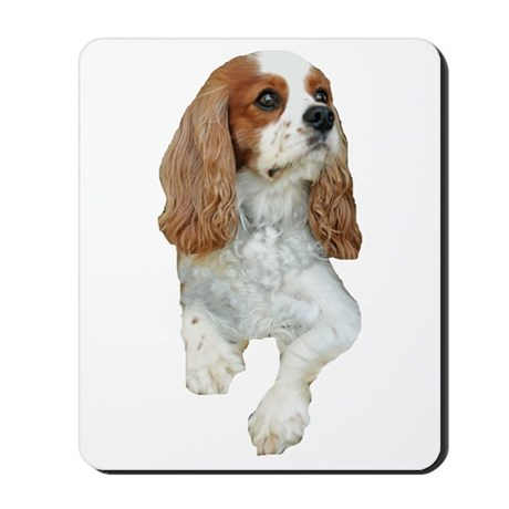 Cavalier King Charles Mousepad