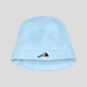 Money Pouring Santa Hat baby hat