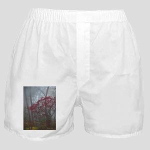 .foggy sumac. I Boxer Shorts