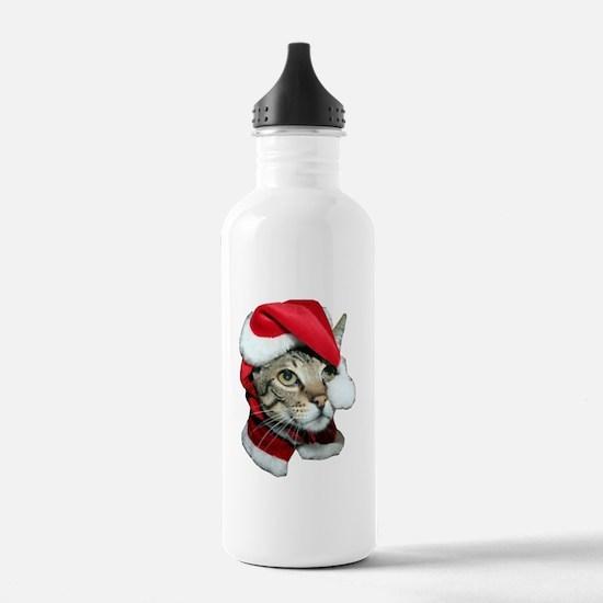 Cute Santa Cat Water Bottle