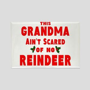 Grandma Got run over Rectangle Magnet