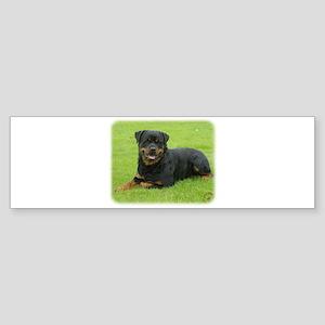 Rottweiler 9W025D-046 Sticker (Bumper)
