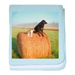 Cat and Dog on Hay Bale baby blanket