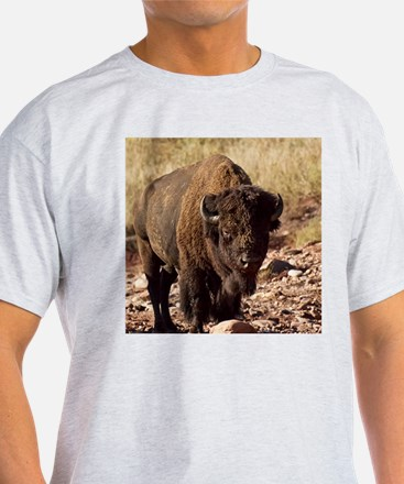 The Waterhole T-Shirt