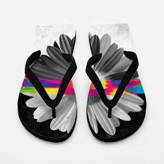 .cross-sections. Flip Flops