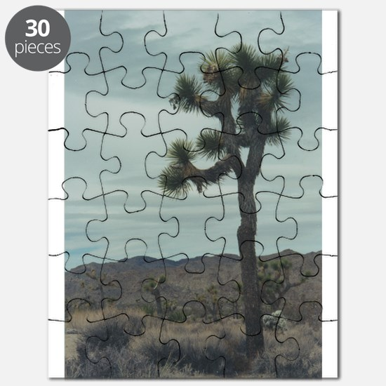 Joshua Tree Puzzle