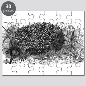 Echidna (spiny anteater) Puzzle