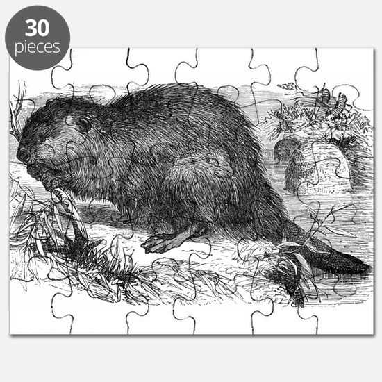 European Beaver Puzzle