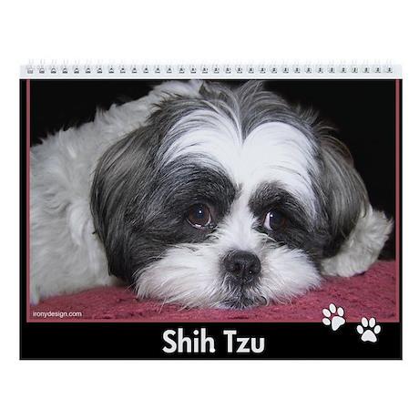 Shih Tzu Calendar Wall Calendar By Ironydesignphotos