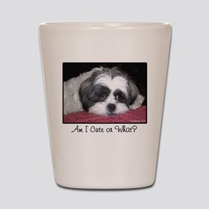 Cute Shih Tzu Dog Shot Glass