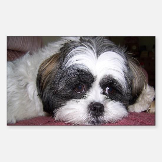 Cute Shih Tzu Dog Sticker (Rectangular)