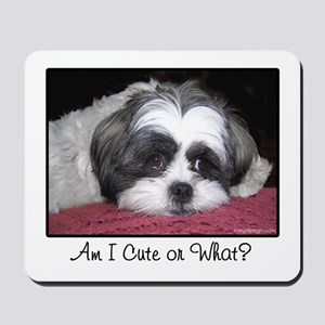 Cute Shih Tzu Dog Mousepad