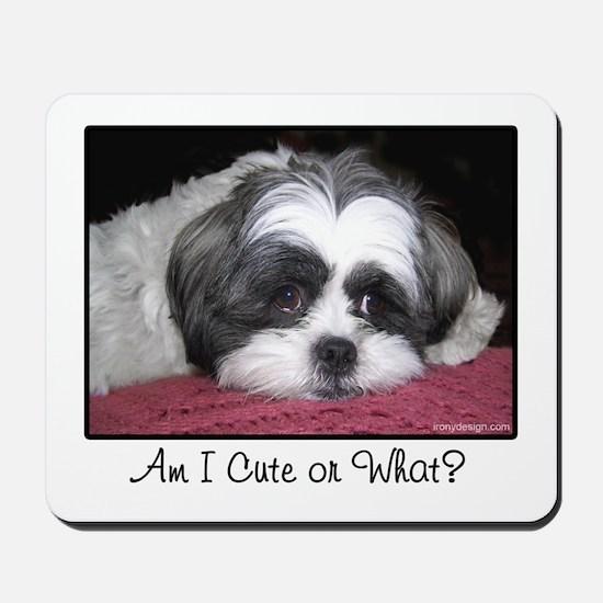 Cute Shih Tzu Dog Mousepad