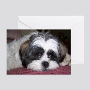 Cute Shih Tzu Dog Greeting Cards (Pk of 20)