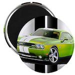 New Challenger Green Magnet