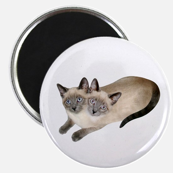 Siamese Twins Magnet