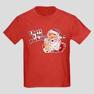 Santa Has a Big Package Kids Dark T-Shirt