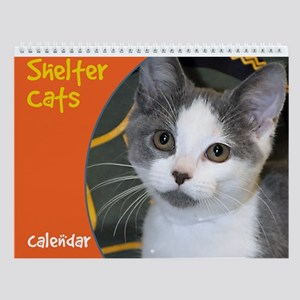 Shelter Cats and Kittens Wall Calendar