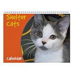 Shelter Cats and Kittens Wall Calendar