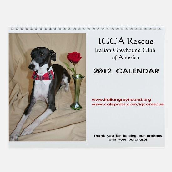Iggy 2013 Wall Calendar