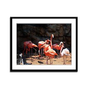 Pink Flamingo - Framed Panel Print
