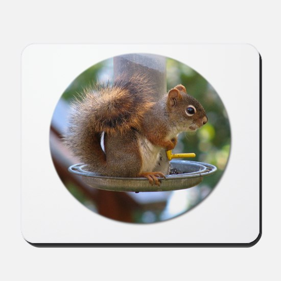 Red Squirrel I Mousepad