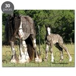 Gypsy Mare and Foal Puzzle