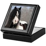 Gypsy Stallion Keepsake Box
