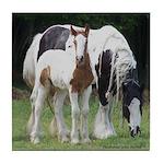 Gypsy Foal Series - Tile Coaster #4