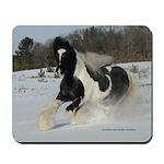 Gypsy Stallion Winter Fun Mousepad