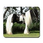 Gypsy Vanner Stallion in full tack Mousepad
