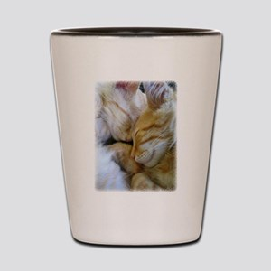 Snuggle Kittens Shot Glass