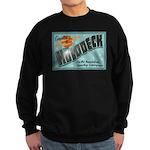 Star Trek Holodeck Sweatshirt (dark)