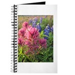 Bluebonnet/Indian Pinks Journal