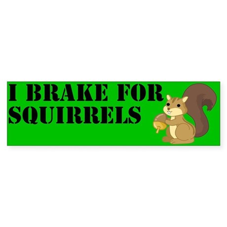 Bumper Sticker - Squirrels