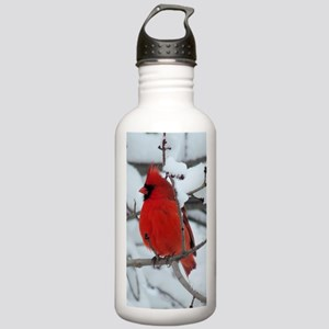 Snow Cardinal Stainless Water Bottle 1.0L