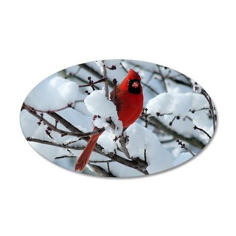 Snow Cardinal 35x21 Oval Wall Decal
