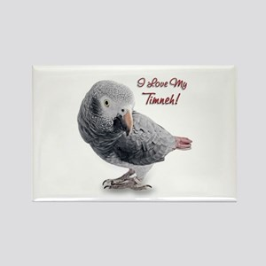 African Grey Parrot Holiday Rectangle Magnet