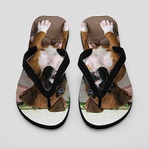 Boxer Dog Flip Flops
