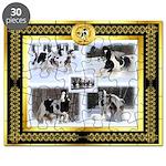 Gypsy Horse WInter Fun Puzzle