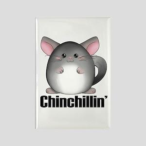 chinchillin Magnets