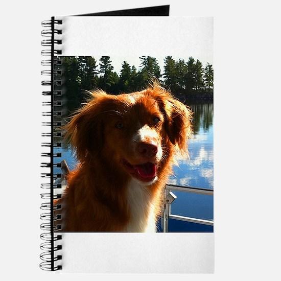 Duck Tollers Journal