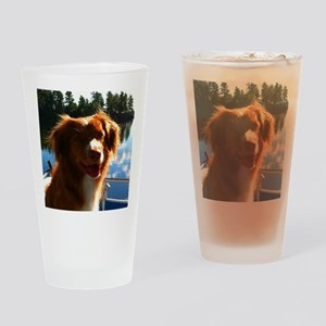 Duck Tollers Drinking Glass