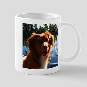 Duck Tollers Mug