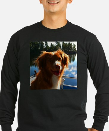 Duck Tollers T
