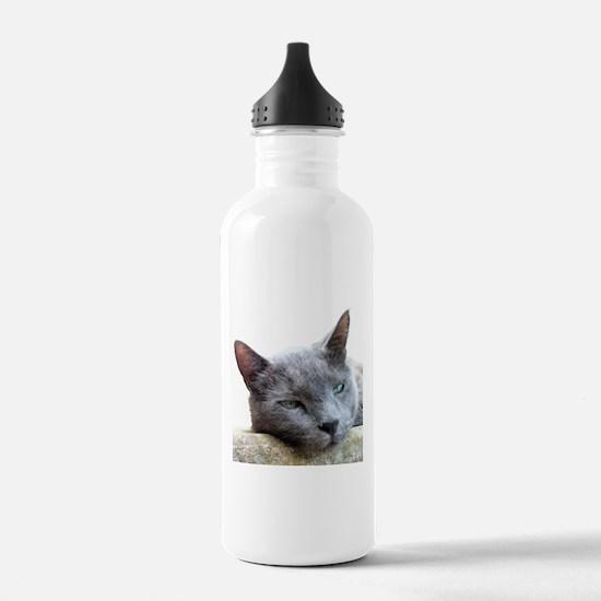 Grey Cat Face Water Bottle